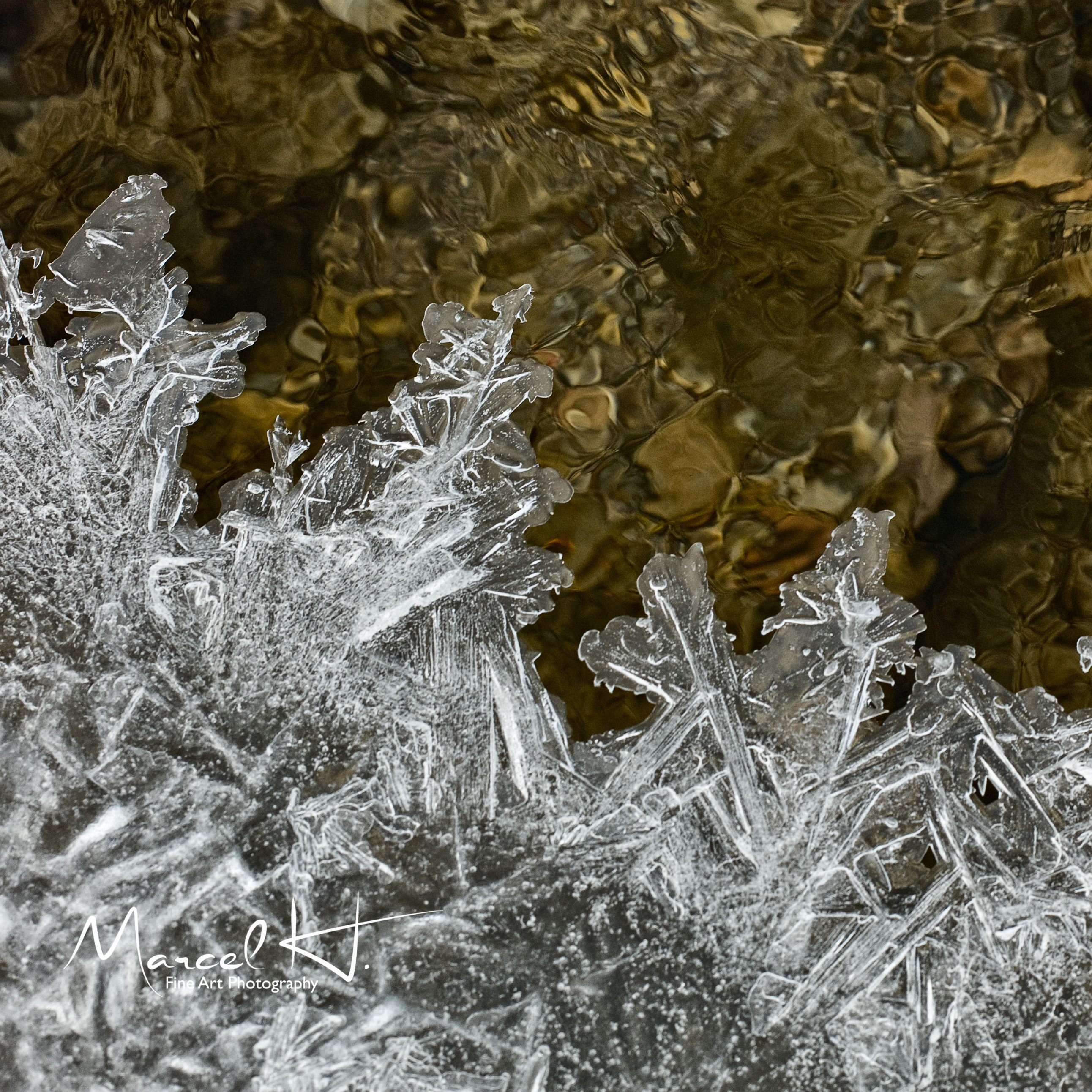 Water_Ice_9
